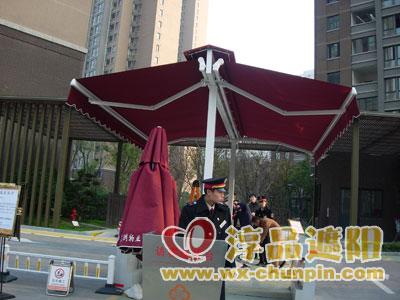 CP5110曲臂式双遮阳篷